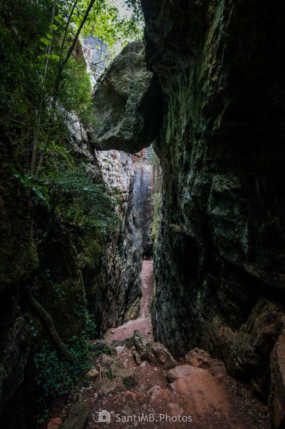 Avencs de la Febró, una profunda grieta en la Serra de la Mussara