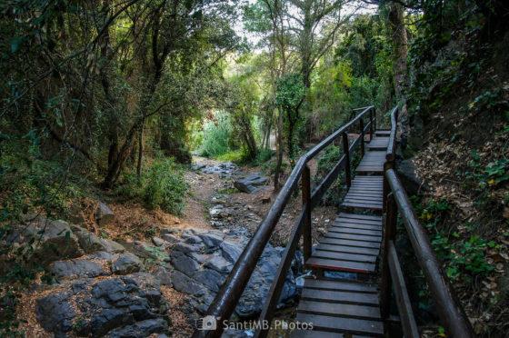 Recuperando un camino ancestral, el Camí del Rec de La Selva del Camp